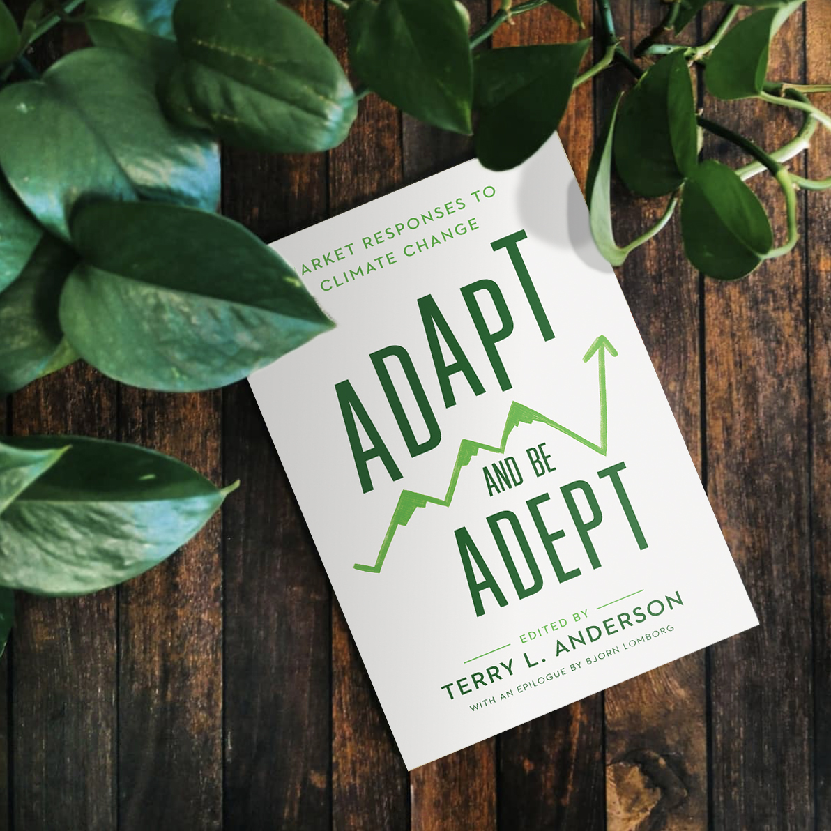adapt-and-be-adept
