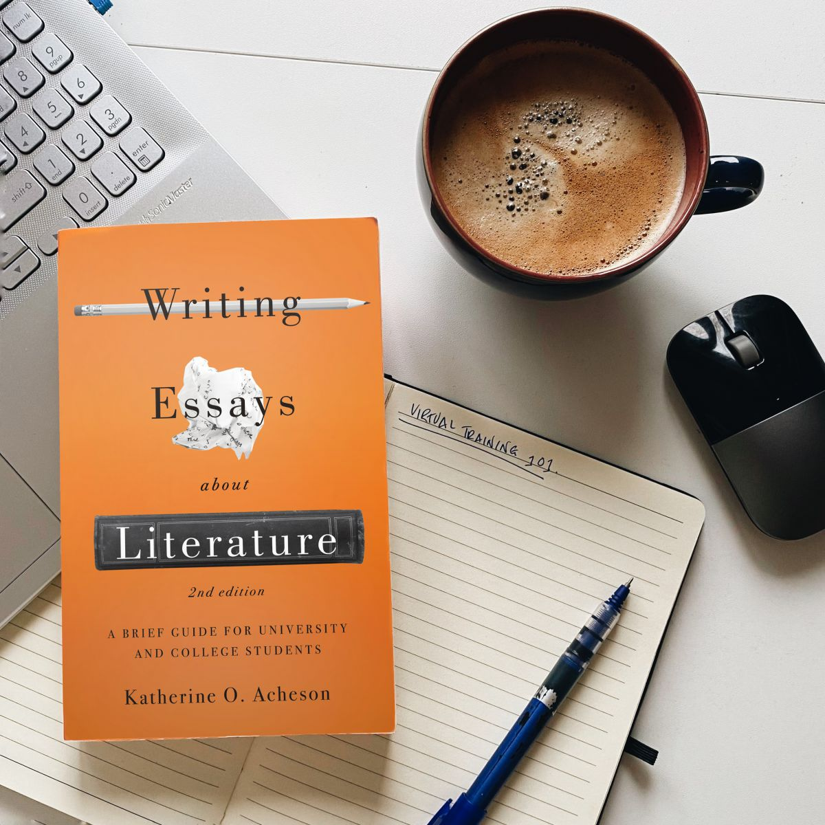 writing-essays-about-literature